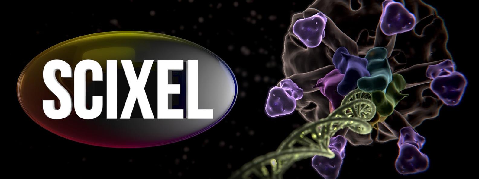 Scixel Logo